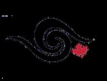 CSA Logo 3